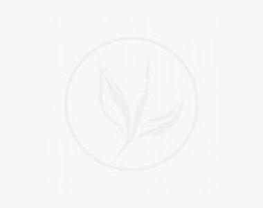 Vårtberberis Kruka 20-25 cm