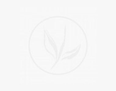 Bergbambu 'Jumbo' Klump 100-125 cm